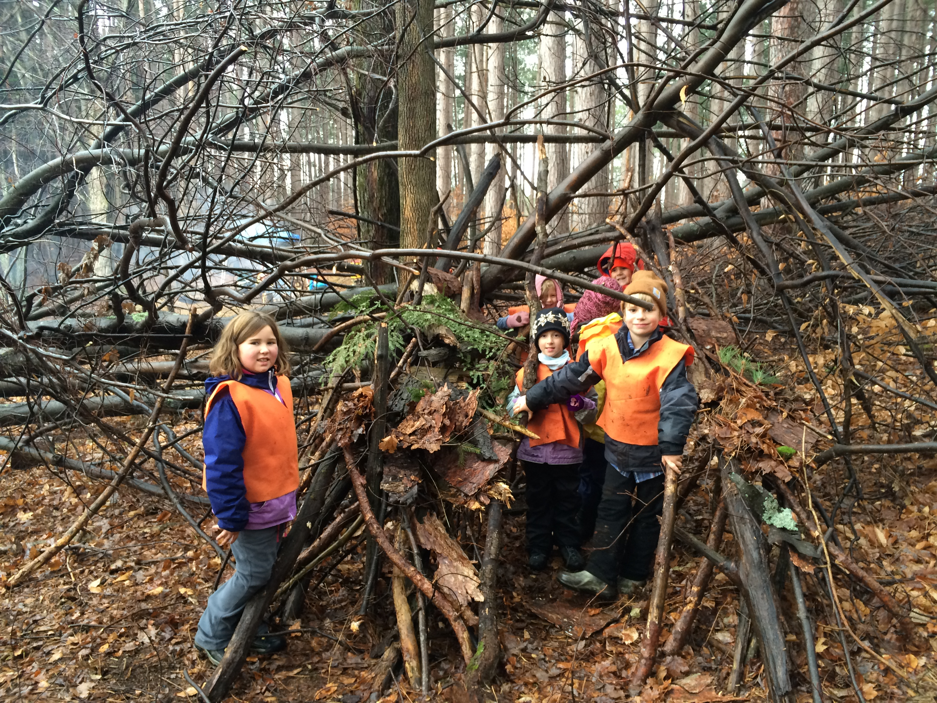 Special School Experience: Forest School