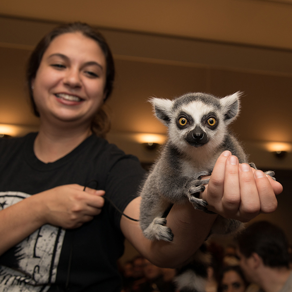 Wildlife Rockstars with lemur