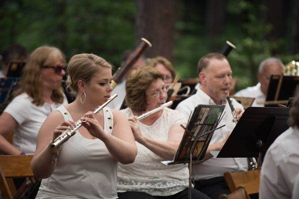 Orchestra in the Pines